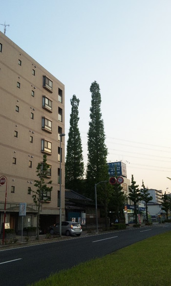 130508_181301